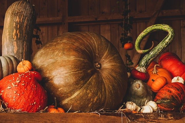 Everything you should know about Thanksgiving